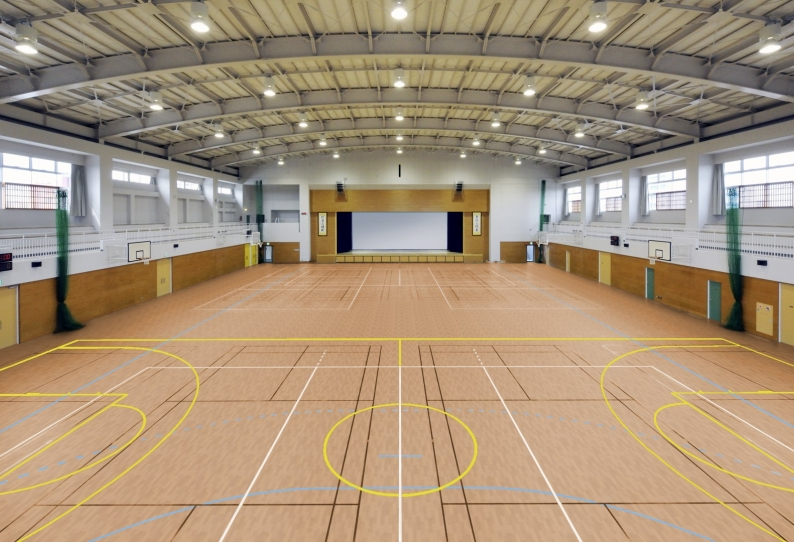 Sports Flooring - Multi-Use Safe