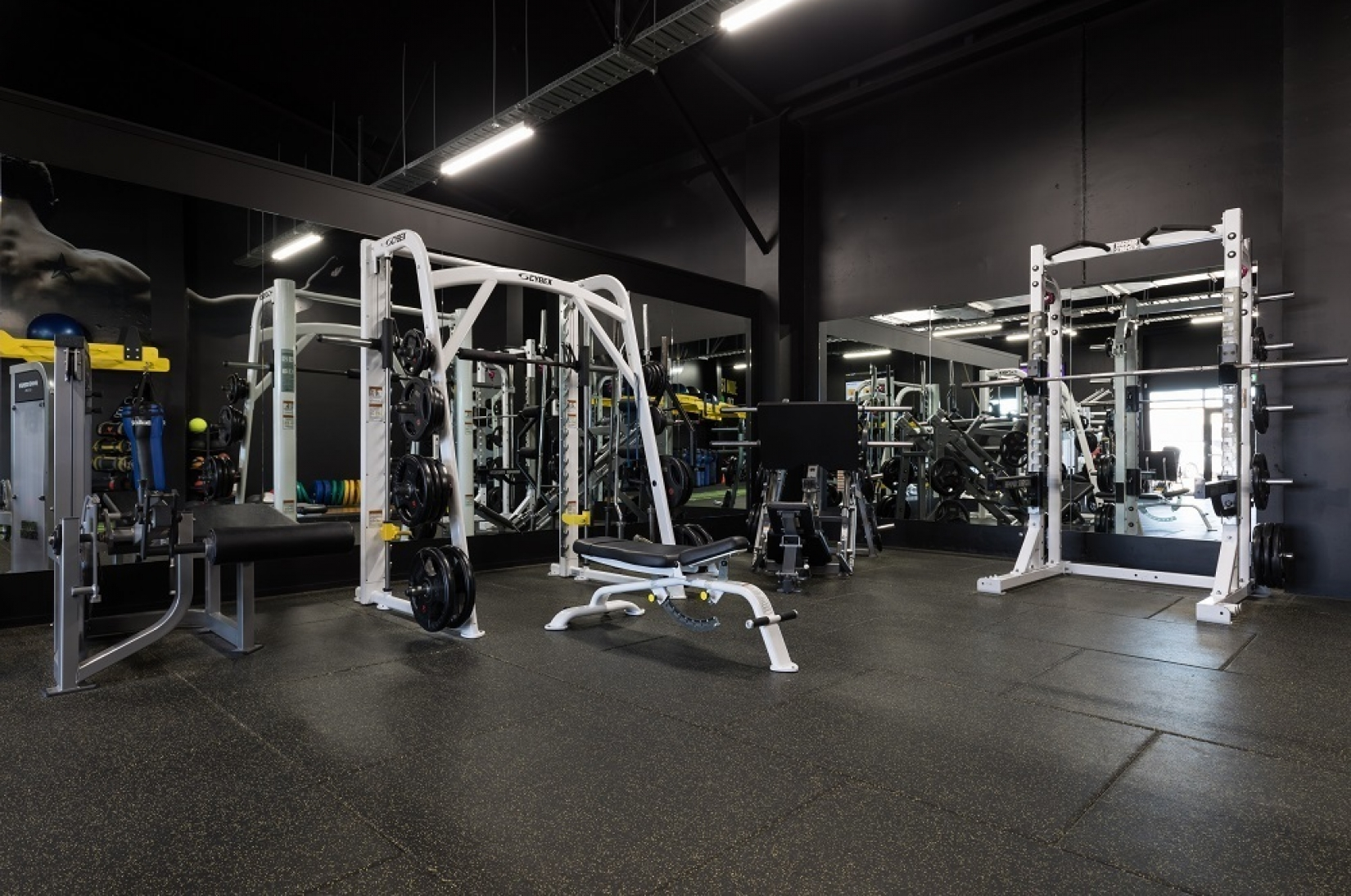 BodyFix - Premium Gym Tiles