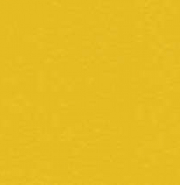 6211 Gold_2.jpg