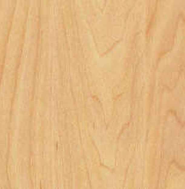 6381 Maple Design_3.jpg (