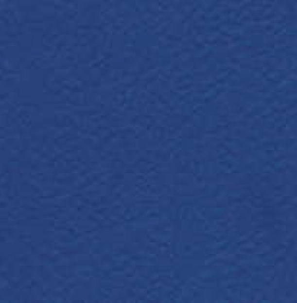 6430 Blue_2.jpg