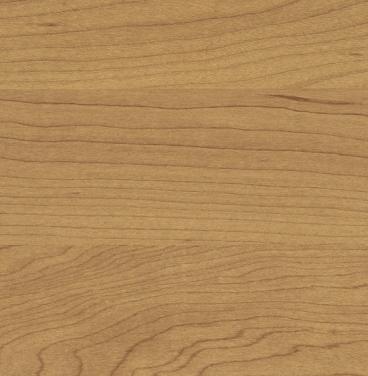 Sports Flooring 6387