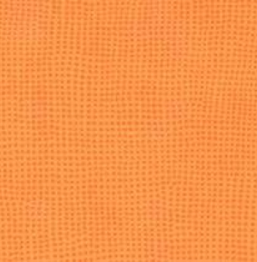 0600 Clementine Taralay Initial Vinyl Floor