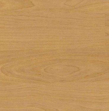 4331 Multi-Use Sports Flooring